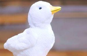 my-special-aflac-duck-destacada