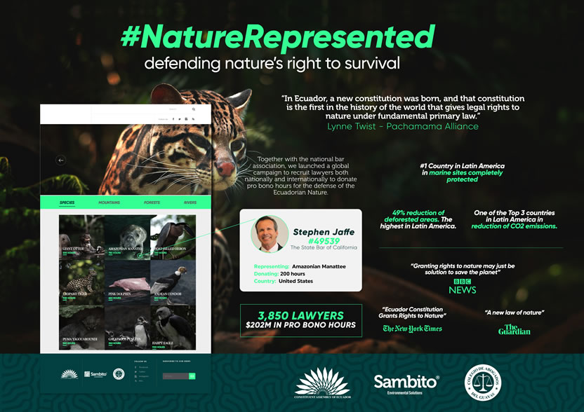 Nature Represented Cannes Lions 2018